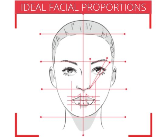 Facial shapes and ideal proportions